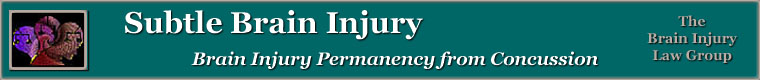 Subtle Brain Injury Banner