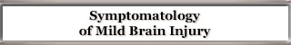 Symptomatology of Mild Brain Injury